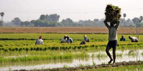 DBT Bihar | बिहार किसान ऑनलाइन पंजीकरण