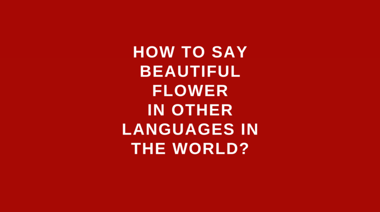 How to say Beautiful flower in other languages in the world?