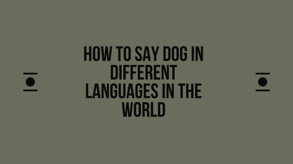 How to say dog in other languages in the world?