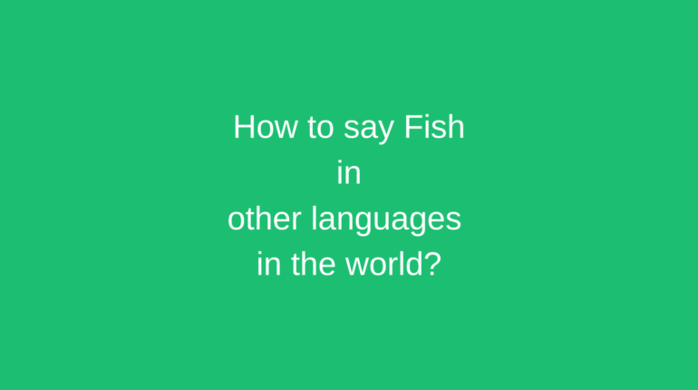 How to say Egg in other languages in the world?