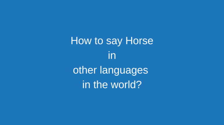 How to say Horse in other languages ​​in the world?