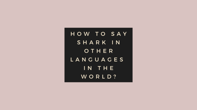 How to say Shark in other languages in the world?