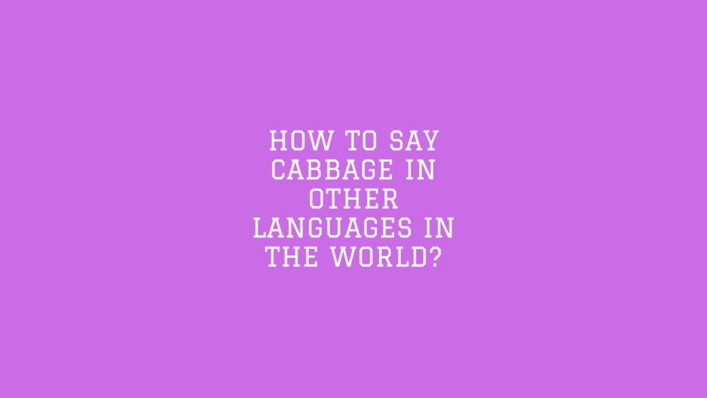 How to say Cabbage in other languages in the world?