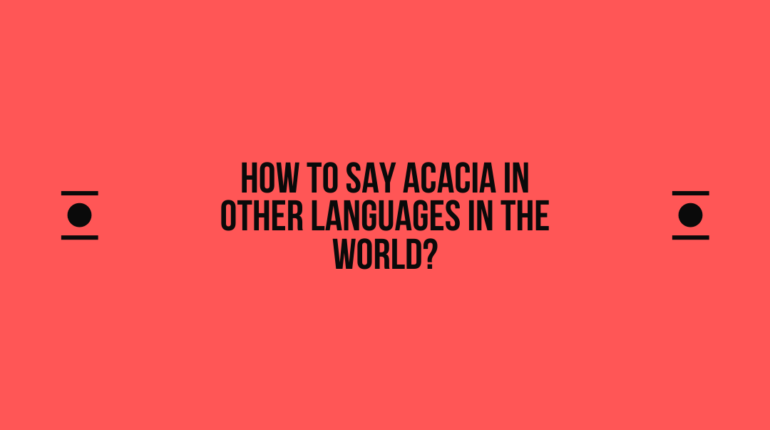 How to say Acacia in other languages in the world?