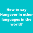 How to say Hangover in other languages in the world?